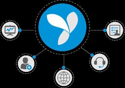 YII Development Services